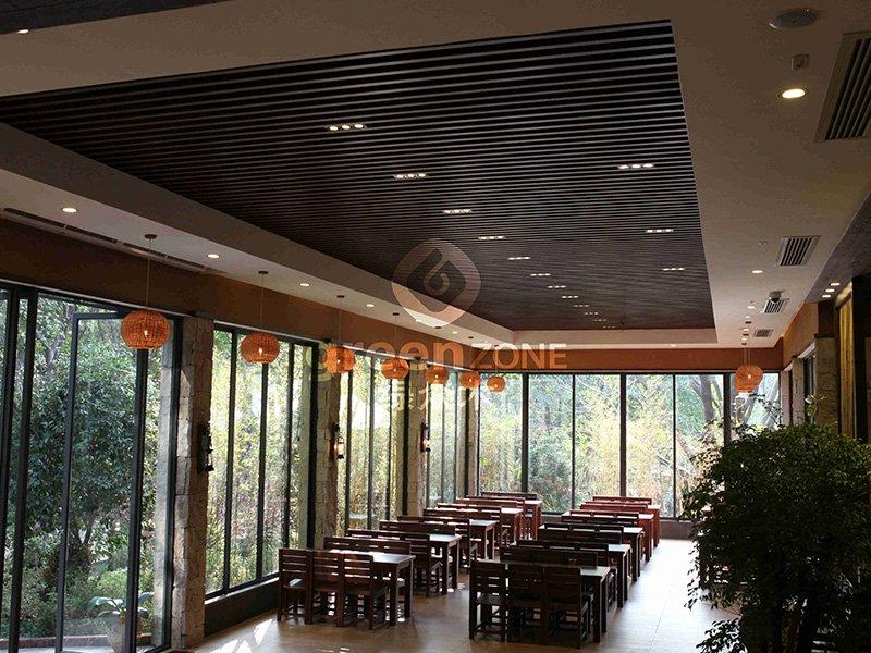 Panda themed Restaurants